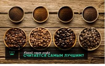 Какой сорт кофе считается самым лучшим?